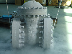 Stainless Steel Cryogenic Valves