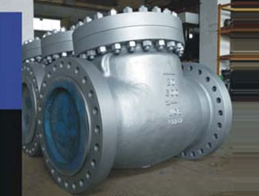 Duplex Steel Check Valves