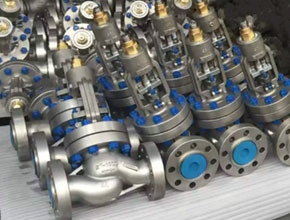 Duplex Steel Valves