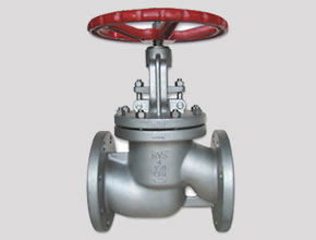 Hastelloy C22 Globe Valves
