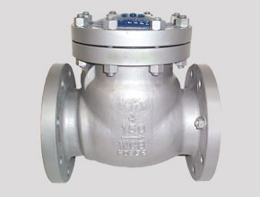 Hastelloy C276 Check Valves
