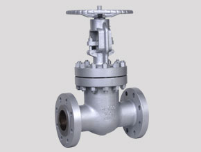 Hastelloy C276 Gate Valves