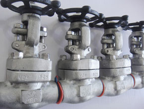 Incoloy 800 Gate Valves