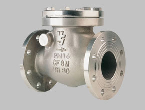 Stainless Steel 321H Check Valves