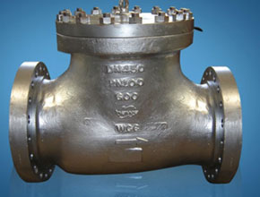 Stainless Steel 904L Check Valves