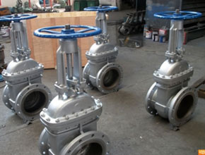 Stainless Steel 304L Gate Valves