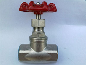 Stainless Steel 304 Globe Valves